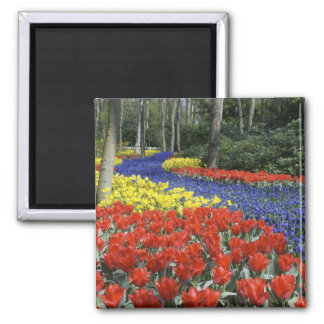 Netherlands, Holland, Lisse, Keukenhof Gardens Refrigerator Magnets