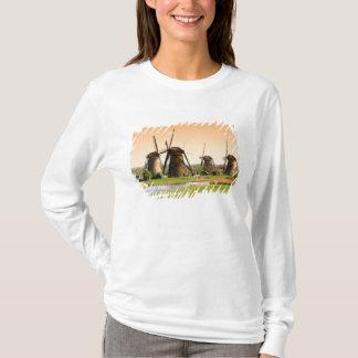 Netherlands, Kinderdijk. Windmills next to T-Shirt