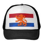 Netherlands Rampant lion Netherlands flag Mesh Hat