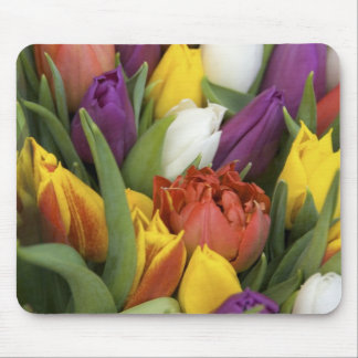 Netherlands, South Holland, Amsterdam Mouse Pad