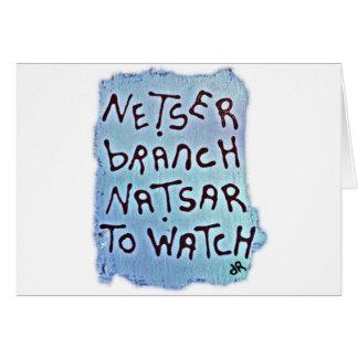 netser netsar card