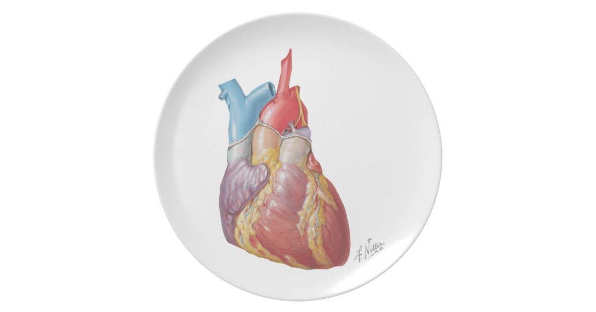 Netter Heart Quot Plate Quot Melamine Plate Zazzle Com
