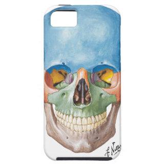 Netter Skull iPhone 5 Case