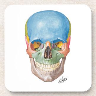 Netter Skull on Sandstone Coasters
