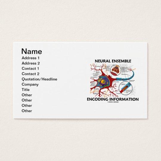 Neural Ensemble Encoding Information Business Card