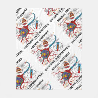 Neural Ensemble Encoding Information Neuron Fleece Blanket