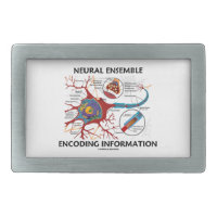 Neural Ensemble Encoding Information Neuron Rectangular Belt Buckles