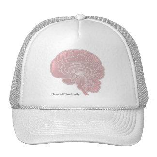 Neural Plasticity Mesh Hat