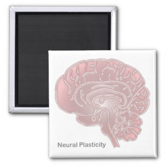 Neural Plasticity 2 Inch Square Magnet