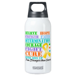 Neuroblastoma Believe Strength Determination SIGG Thermo 0.3L Insulated Bottle