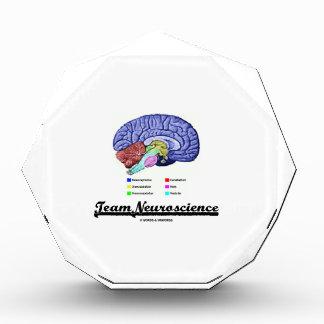 Neurología del equipo (actitud de la anatomía del