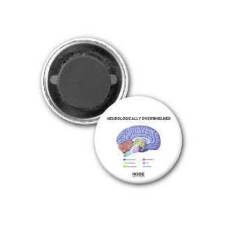 Neurologically Overwhelmed Inside Brain Anatomy Refrigerator Magnets
