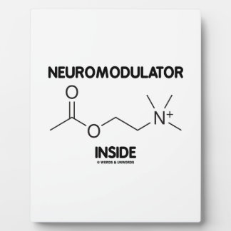 Neuromodulator Inside (Acetylcholine Molecule) Plaque