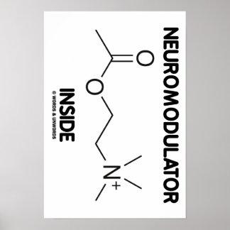 Neuromodulator Inside (Acetylcholine Molecule) Poster