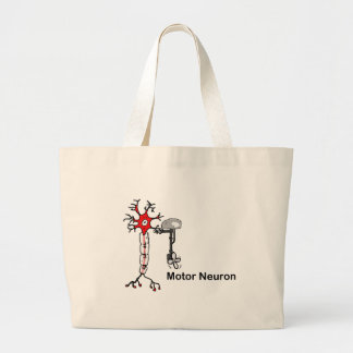 Neurona de motor bolsas
