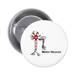 Neurona de motor pins