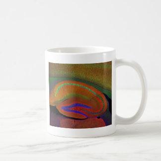Neuronas 3 de Hippocampal Taza De Café