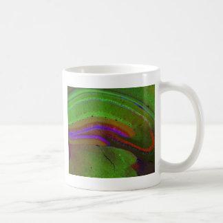 Neuronas de Hippocampal Taza De Café
