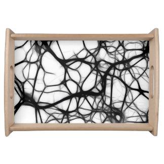 Neuronas del ser humano de la célula bandeja