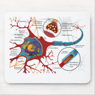 Neurons Nerve Style Mouse Pad