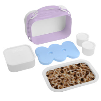 Neurons Nerves Lunch Box