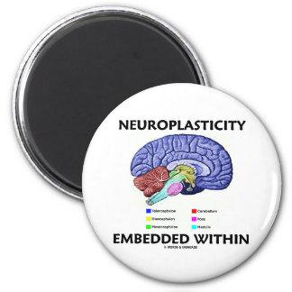 Neuroplasticity Embedded Within (Brain Anatomy) 2 Inch Round Magnet
