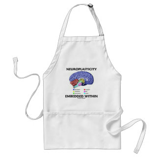 Neuroplasticity Embedded Within (Brain Anatomy) Adult Apron