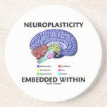 Neuroplasticity Embedded Within (Brain Anatomy) Coaster