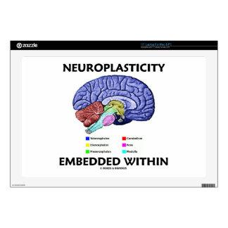 Neuroplasticity Embedded Within (Brain Anatomy) Laptop Decals