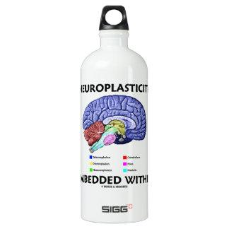 Neuroplasticity Embedded Within (Brain Anatomy) Water Bottle