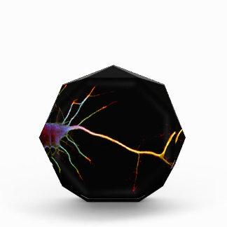 Neuroscience, neuron, science acrylic award