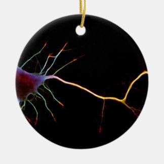 Neuroscience, neuron, science ceramic ornament