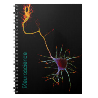 Neuroscience, neuron, science notebook