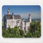 Neuschwanstein Castle Mousepads