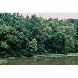 Neuse River Photo Sculpture