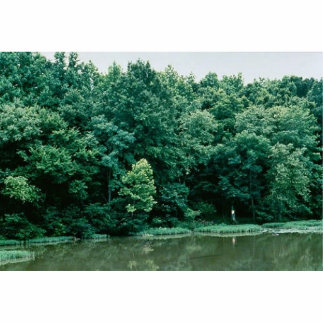 Neuse River Photo Cutouts