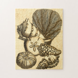 Neutral Shells and Coral Collection Jigsaw Puzzle