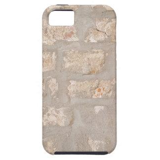 Neutral Tones Customizable Brick Wall Pattern iPhone SE/5/5s Case