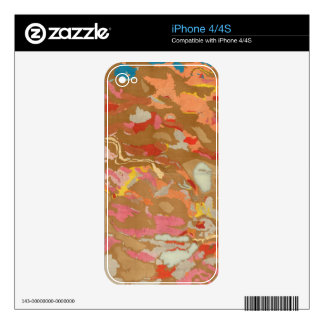 Nevada Basin Geological Decal For iPhone 4