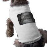 Nevada, Central Park, New York City Camisa De Perro