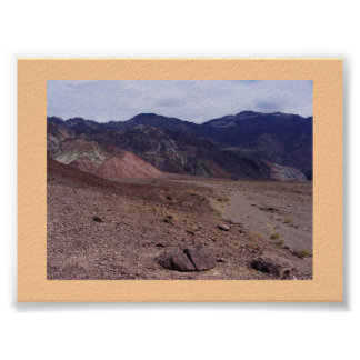 Nevada Desert Print