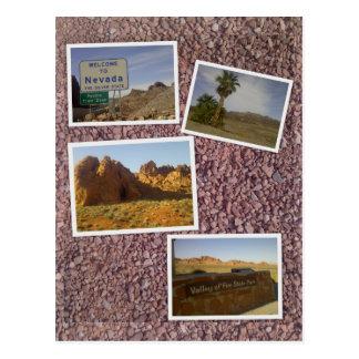 Nevada - Desert scenes Postcard