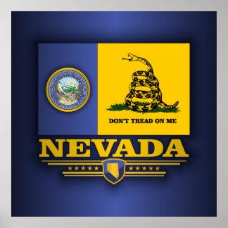 Nevada DTOM Póster