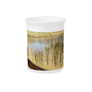 Nevada landscape with wood fence, lake, sky. pitchers