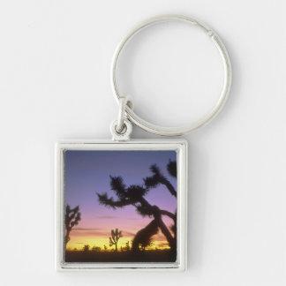 NEVADA. LOS E.E.U.U. Brevifolia de la yuca de las  Llavero Cuadrado Plateado