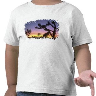 NEVADA. LOS E.E.U.U. Brevifolia de la yuca de las Camiseta