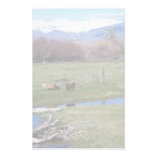 Nevada Ranch Landscape Stationery Paper
