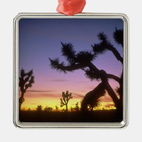 NEVADA. USA. Joshua trees Yucca brevifolia) Metal Ornament