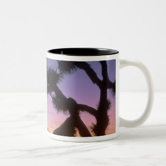 NEVADA. USA. Joshua trees Yucca brevifolia) Two-Tone Coffee Mug