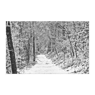 Nevadas en el rastro B&W del bosque Impresión En Tela